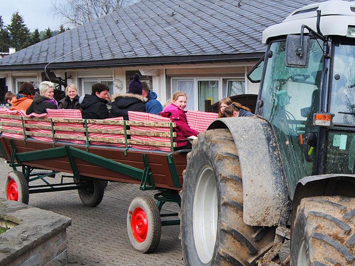 Erkunden Sie in Ihrem Urlaub die Region um den Hof Kilbe in Bad Berlegburg bei einer Planwagenfahrt